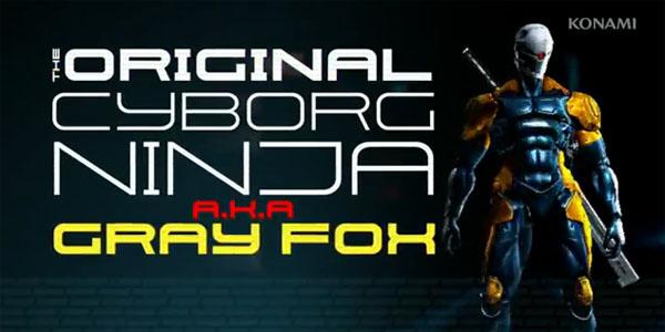 MGR-GrayFox