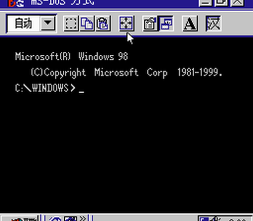 It's a MS-DOS  prompt-that doesn't work!